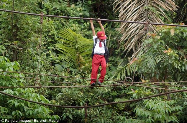 นักเรียนอินโดฯ ไต่เชือกสะพานสูงกว่า 30 ฟุต เดินทางไปโรงเรียน