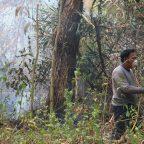ไฟป่าไหม้ต่อเนื่องผู้นำชุมชนชาวบ้านดัดแปลงเครื่องมือเกษตรเข้าดับเพลิงเพราะขาดแคลนเครื่องมือ